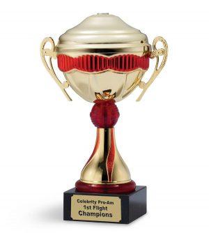 Custom Cup Trophy
